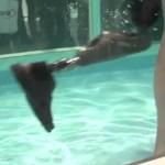Protéza do vody na veletrhu v Lipsku