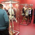 Expozice náhrad končetin, kostí a kloubů
